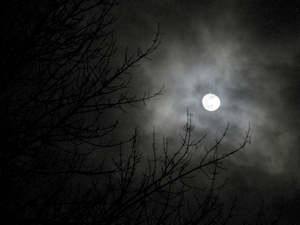 Werewolf Moon - Geoffrey A. Landis photo